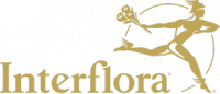 interflora.pt